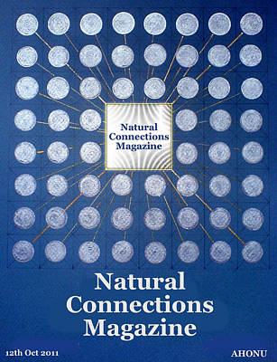 Natural Connections Magazine Art Print