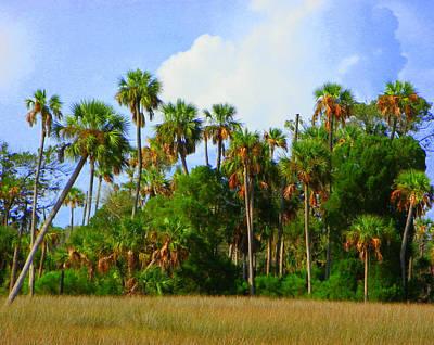 Photograph - Natural Florida Palms by Sheri McLeroy