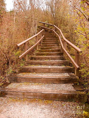 Photograph - Natural Sepia Stairway by KD Johnson