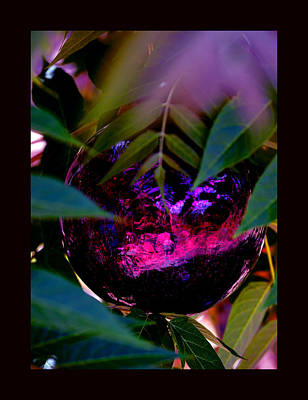 Art Print featuring the photograph Natural Transcendence by Susanne Still