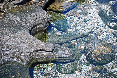 Photograph - Nature In Abstract At James Bay by Harvey Barrison
