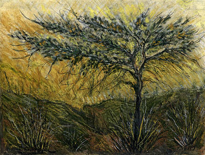 Painting - Nature Landscape Green Thorns Acacia Tree Flowers Sunset In Yellow Clouds Sky  by Rachel Hershkovitz