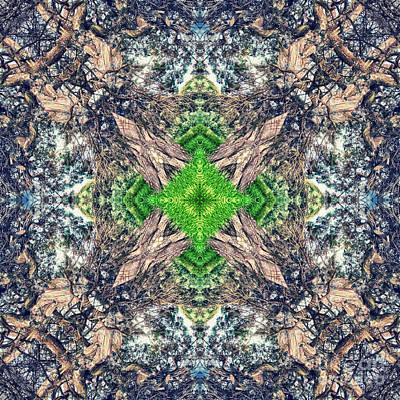 Backdrop Digital Art - Nature Mandala by Stelios Kleanthous