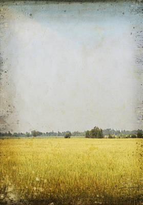 Aging Photograph - Nature Painting On Old Grunge Paper by Setsiri Silapasuwanchai