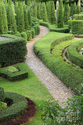 Nature Path Through In The Garden Original