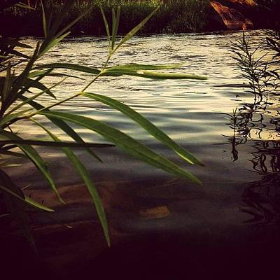 Marsh Photograph - #nature #river #marsh #water by Monti The Lone Wanderer