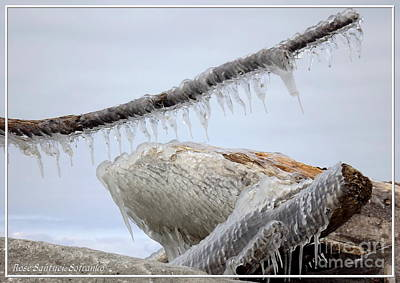 Photograph - Natures Ice Sculptures 3 by Rose Santuci-Sofranko