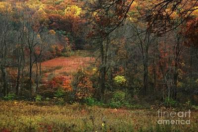 Nature's Paints Art Print