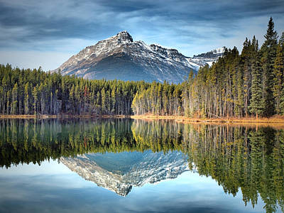 Photograph - Nature's Reflections by Tara Turner