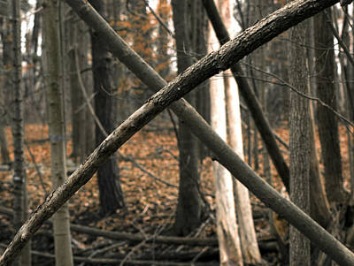 Landscape Photograph - Natures Warning X  by LeeAnn McLaneGoetz McLaneGoetzStudioLLCcom