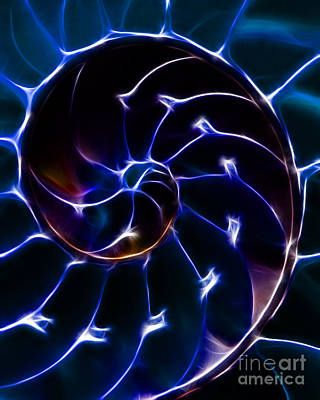 Nautilus Shell - Electric - Blue Art Print