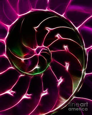Nautilus Shell - Electric - Violet Art Print