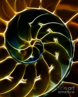 Nautilus Shell - Electric - Yellow Art Print