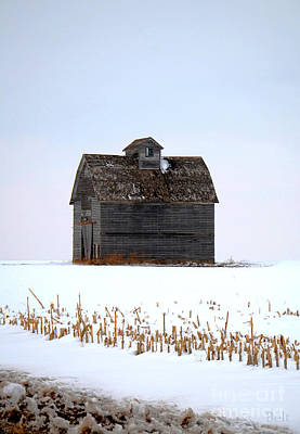 Nebraska Barn In Winter Art Print by Christine Belt
