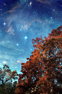 Nebula Treescape Art Print by Paul Grand Image