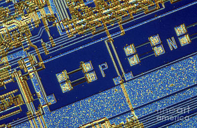 Integrated Photograph - Nec 8088 Microprocessor by Michael W. Davidson