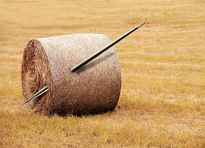 Needle In A Haystack, Conceptual Artwork Print by Victor Habbick Visions