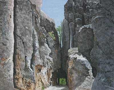 Needles Highway Art Print by Betty-Anne McDonald