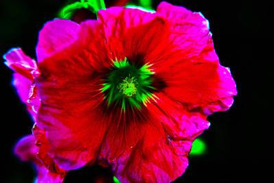 Neon Glow Original