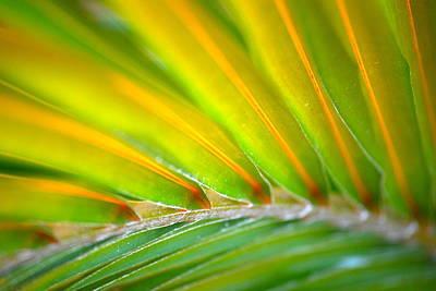 Neon Palm Art Print by Kimberly Gonzales