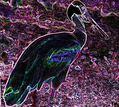 Photograph - Neon Spoonbill by Elizabeth  Doran