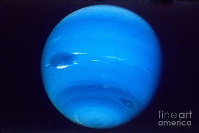 Photograph - Neptune by NASA/JPL-Caltech