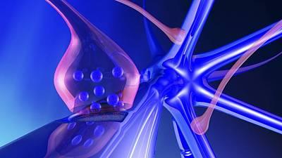 Nerve Synapse Art Print by Pasieka