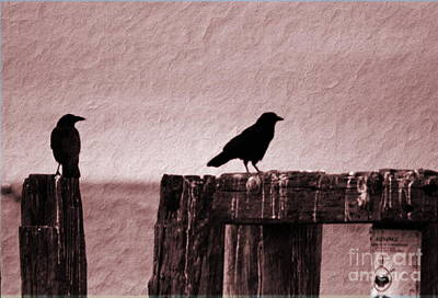 Photograph - Nevermore by Morgan Wright