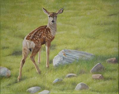 Mule Deer Fawn Painting - New Beginnings by Tammy  Taylor