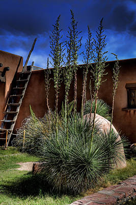 New Mexico Photograph - New Mexico Adobe by David Patterson