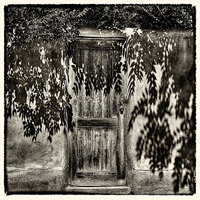 Photograph - New Mexico Door by David Patterson