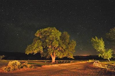 New Mexico Stars Print by Mark Fesgen