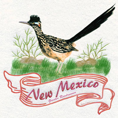 Digital Art - New Mexico State Bird The Greater Roadrunner by Walter Colvin