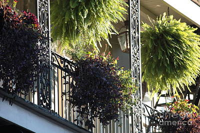 Photograph - New Orleans Afternoon Light by Carol Groenen