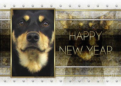 New Year - Golden Elegance Australian Kelpie Art Print
