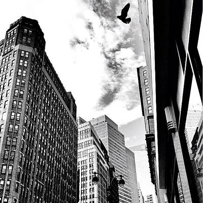 City Scenes Photograph - New York City - In Flight by Vivienne Gucwa