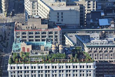 Photograph - New York Roof Garden by David Grant