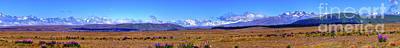 Photograph - New Zealand Southern Alps Panorama by Harry Strharsky