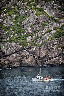Newfoundland Fishing Boat Art Print by Verena Matthew