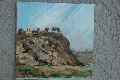 Newport Beach Back Bay Cliff Art Print