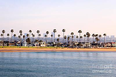 Winter Animals - Newport Beach Balboa Peninsula Coastline by Paul Velgos