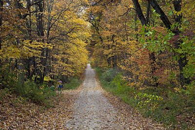 Photograph - Next Stop In Autumn by John Crothers