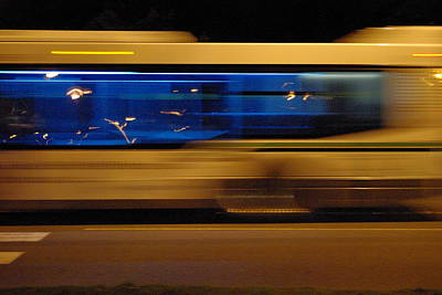 Photograph - Night Bus by Marilyn Wilson
