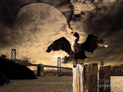 Night Of The Cormorant Art Print by Wingsdomain Art and Photography