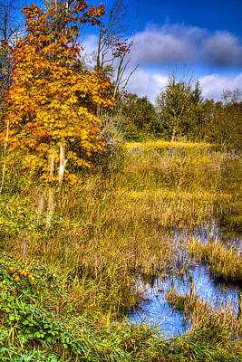 Photograph - Nisqually Wildlife Refuge P1 by David Patterson