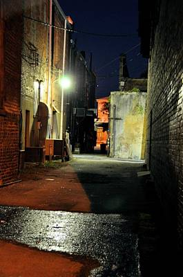 Photograph - No Alley Cats Tonight by Jan Amiss Photography