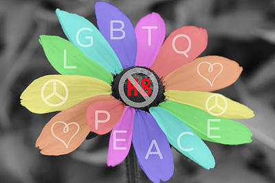 Photograph - No H8 Lgbtq Peace by Mark J Seefeldt