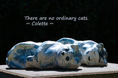 No Ordinary Cats Art Print