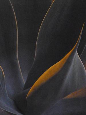 Nocturnal Interludes 'round Midnight 3 Art Print