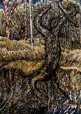 Wetlands Drawing - Noosa Everglades No 1 by Helen Duley